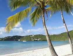 /_uploads/images/branch_tours/RCI-charlotte-amalie-st-thomas-magens-bay-beach-palm-trees.jpg