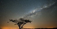 /_uploads/images/branch_tours/southafricanature_day1_southafricatourbegins.jpg